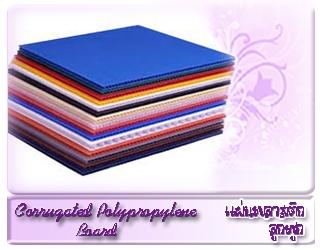 แผ่นพลาสติกลูกฟูก Corrugated polypropylene Board